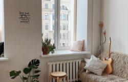 Indoor Plants to Brighten up your Home